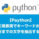 python正規表現